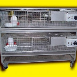 2 Katlı Civciv Büyütme Kafesi